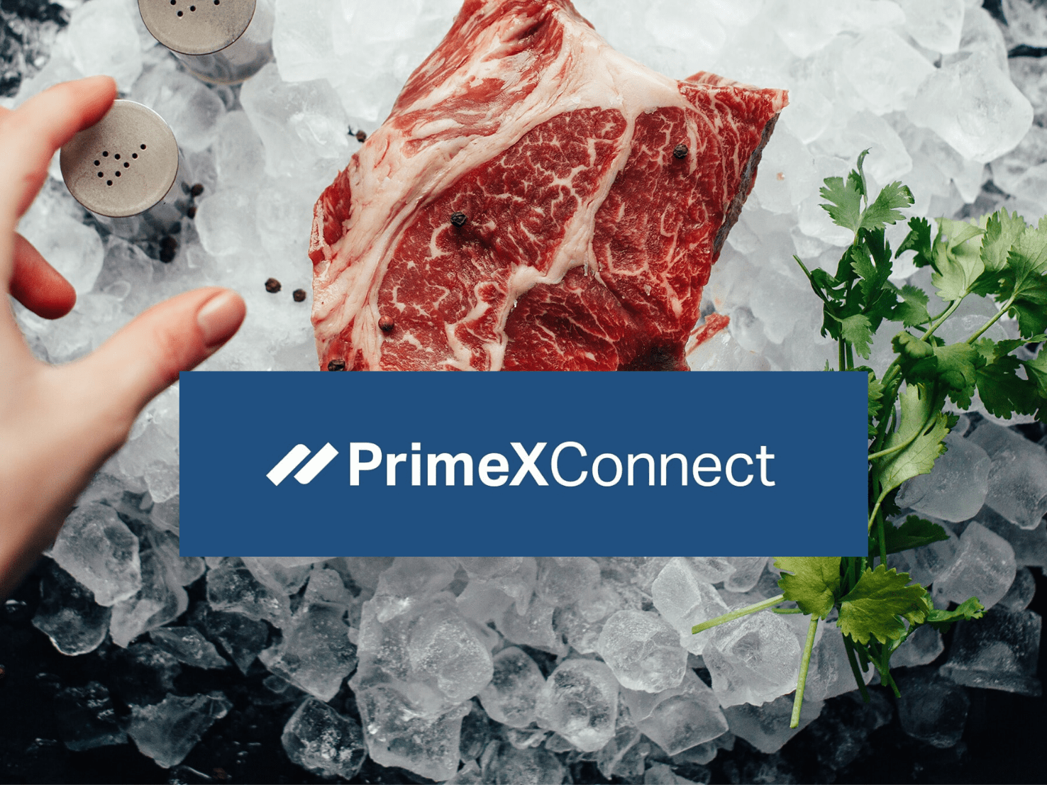 PrimeX Connect Background (1)
